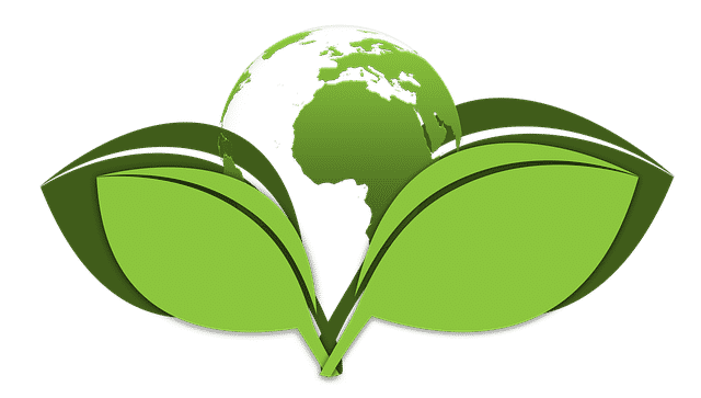 Die Umweltplakette Alles Was Du Uber Die Plakette Wissen Musst